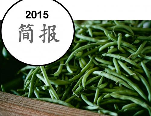 2015 简报