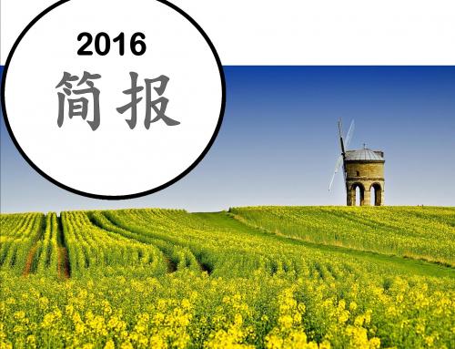 2016 简报