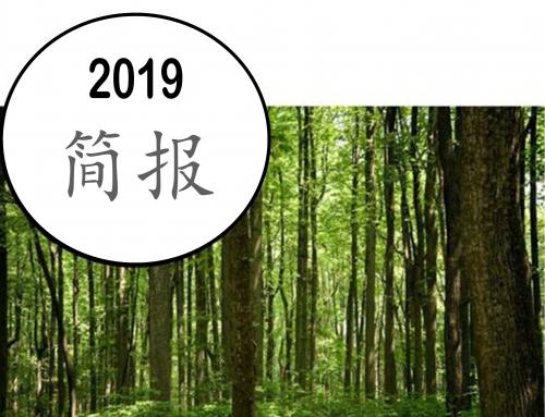 2019 简报