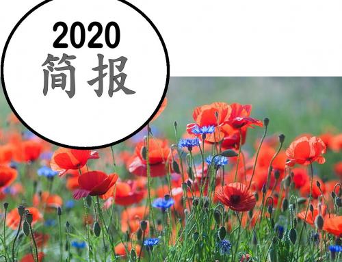 2020 简报